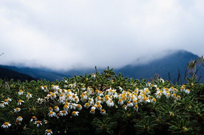 taormina-i-etna-078