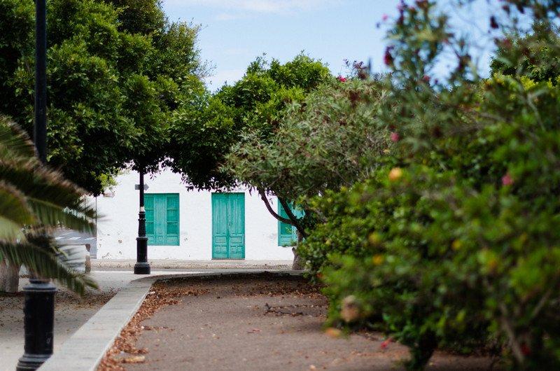 la-oliva,-el-coacha-i-corralejo-park-035
